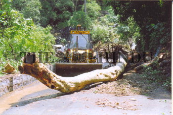Image Id : 5523044 <span>Date : 2005-08-29 <span>Category : Disaster and Accident</span>