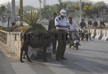 Image Id : 131646947 <span>Date : 2012-03-12 <span>Category : Politics</span>
