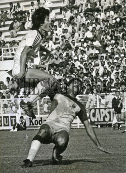 Image Id : 187352239 <span>Date : 1982-11-22 <span>Category : Sport</span>